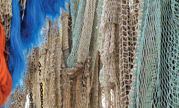 Use of small mesh size nets threatens fish wealth for Small fish net
