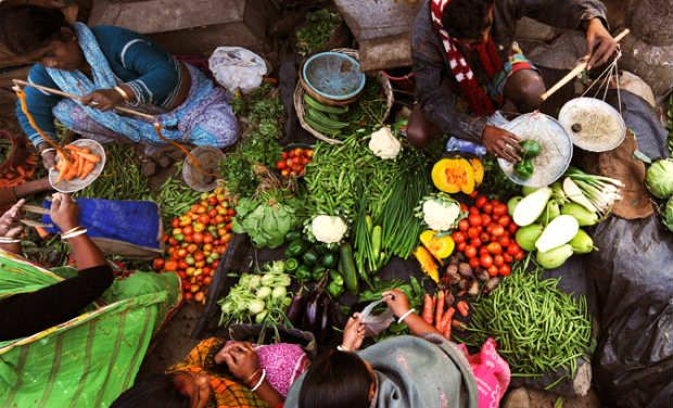 food crisis in pakistan essay Three essays on food safety and foodborne illness jing liang iowa state university market-imposed penalties and other fines levied due to the food crisis.