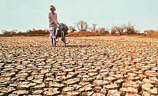 land degradation and global warming essay