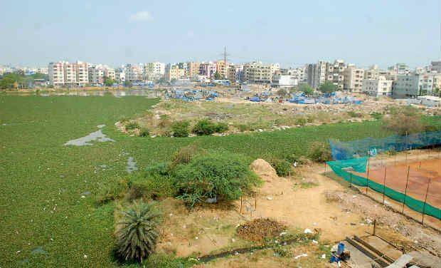 A new phenomenon is being witnessed in riverfront villages that are part of the state capital region. While the fields in these villages were earlier open tracts of land, these days, fences dividing them are springing up.  Picture for
