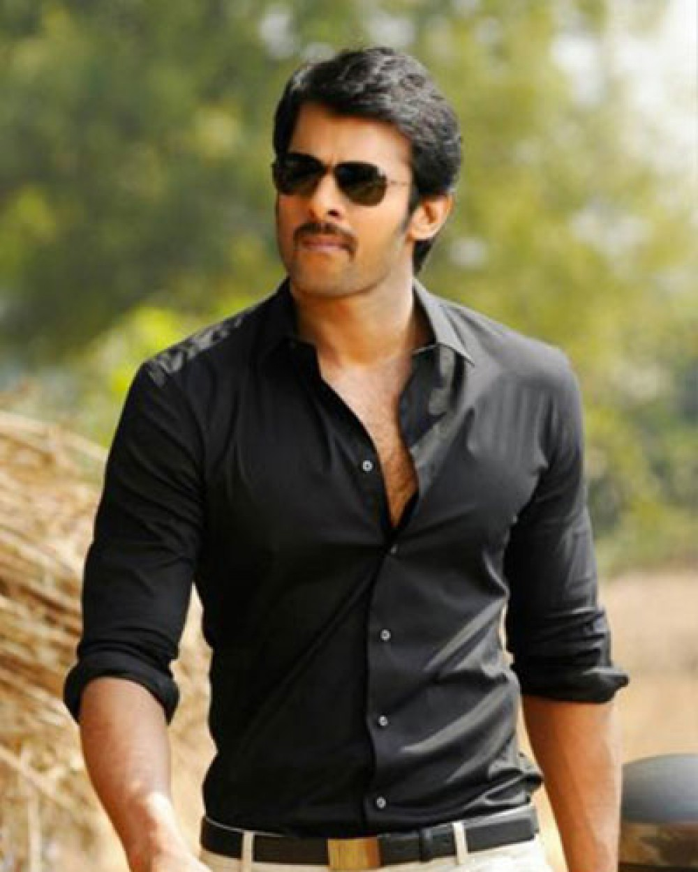 if i get good hindi films, i would definitely act in them: prabhas