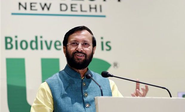 Environment Minister Prakash Javadekar. (Photo: PTI/File)