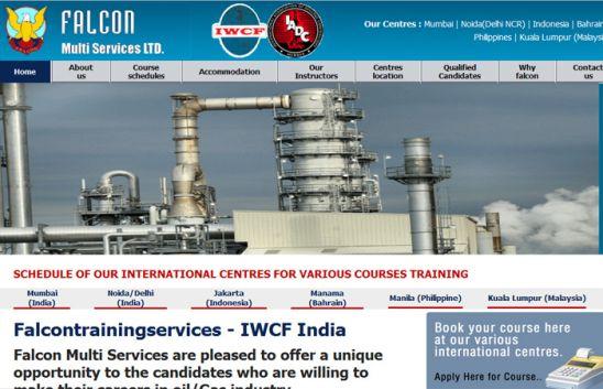 falcontrainingservices navi mumbai web design