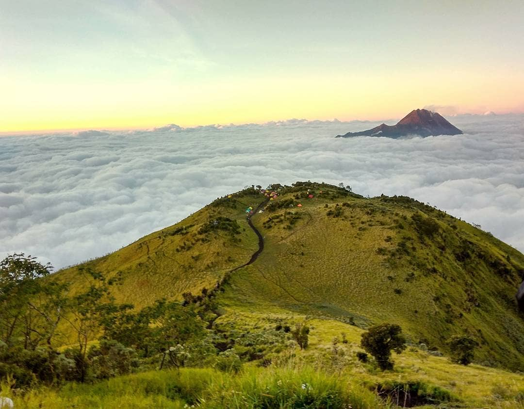 MERBABU VIEW AND CAFE