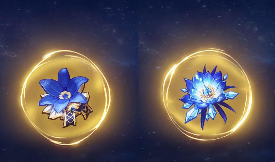 Genshin Impact Blizzard Strayer + Noblesse Oblige