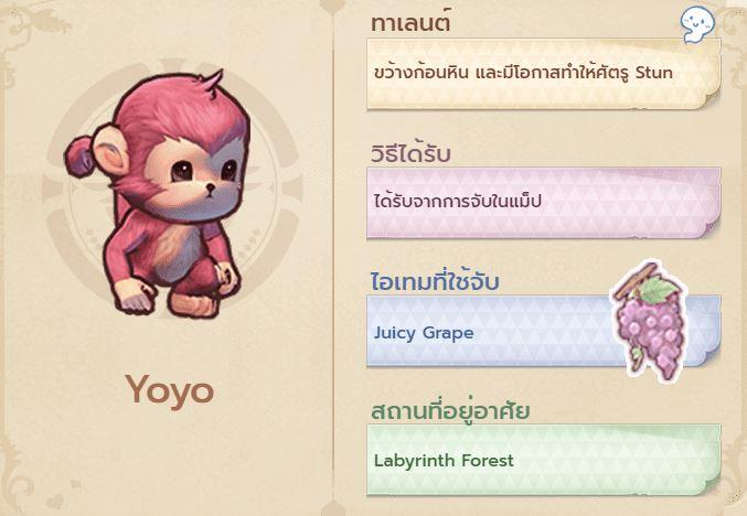 ROX - ระบบสัตว์เลี้ยง - Yoyo