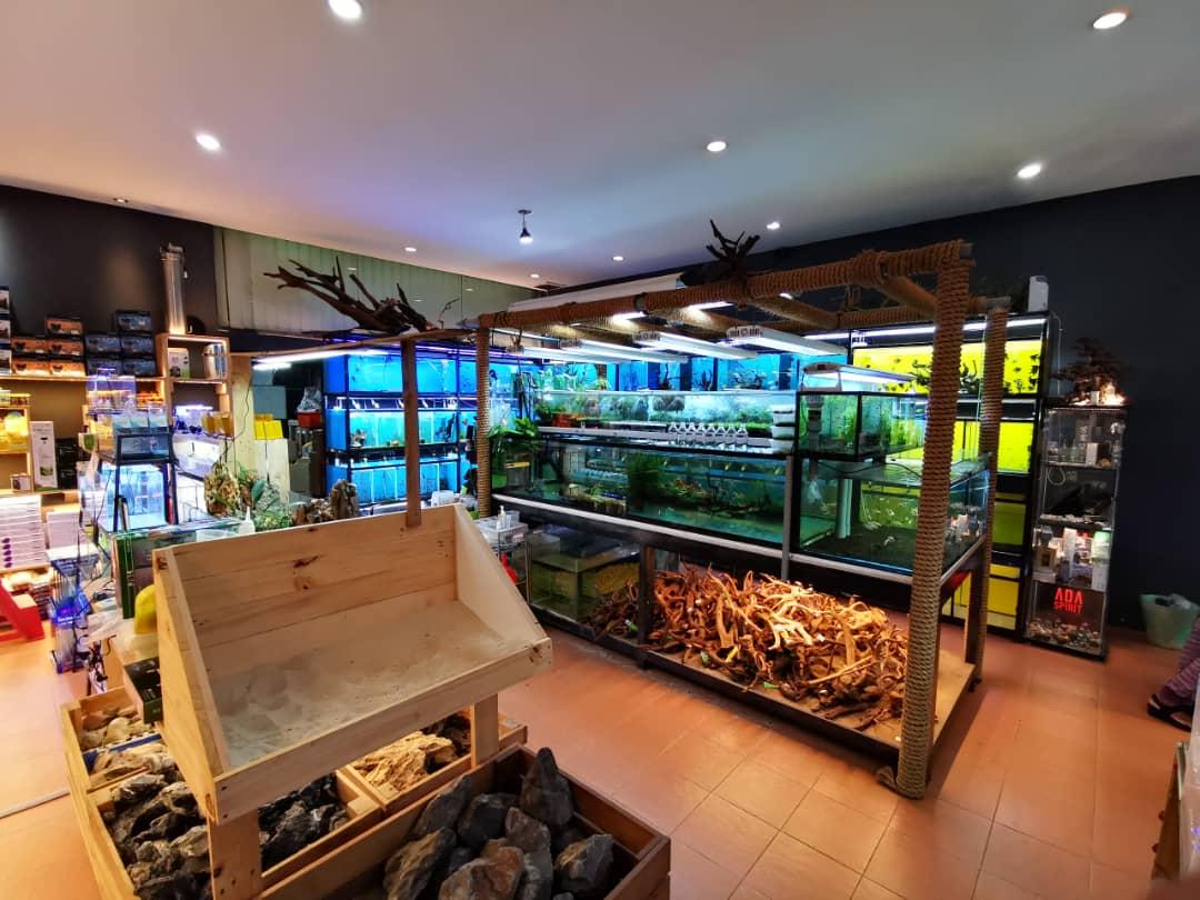 Aqua Legend Concept Shop ( ALCS ) | Inspired Lifestyle
