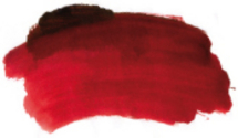 permanent_brown_madder_colour_chart_swatch.jpg