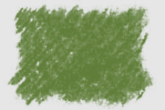 OLIVE GREEN.png