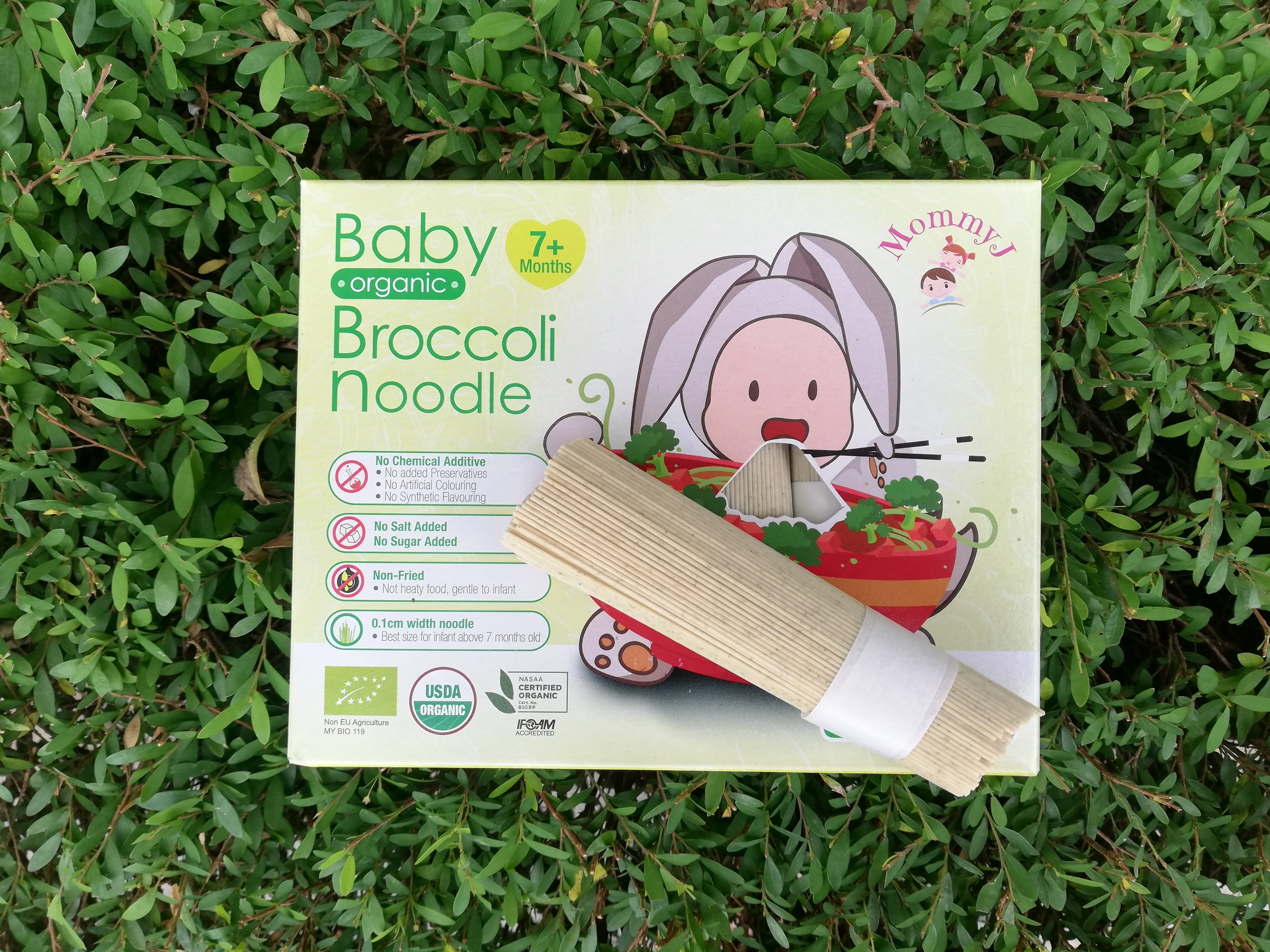 Broccoli Noodles_MommyJ.jpg