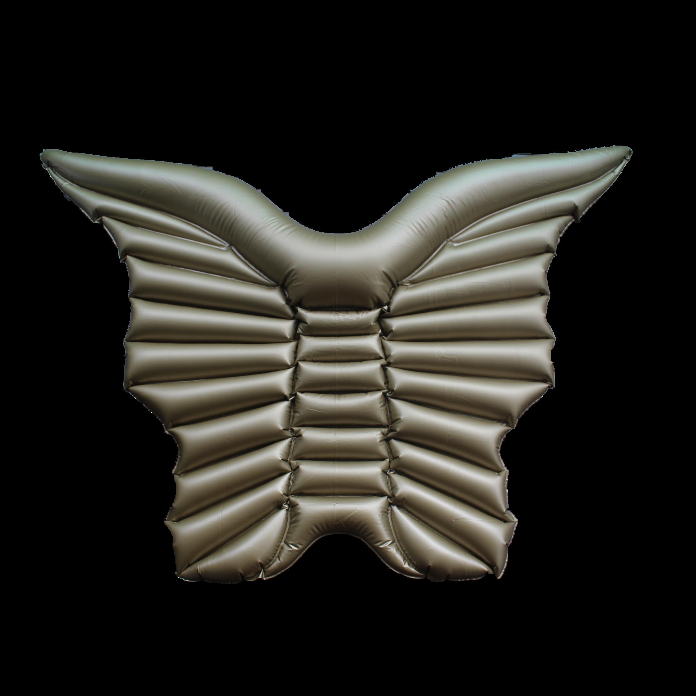 goldbutterfly.jpg