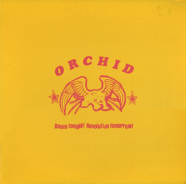orchid-dancetonite10.jpg