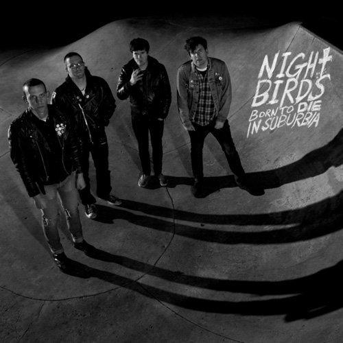 nightbird-born.jpg