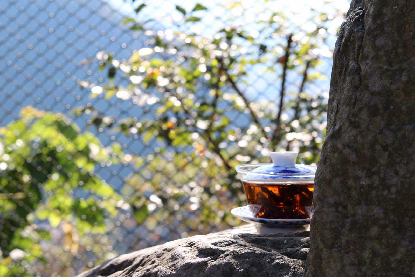 專賣台灣茶葉 - 不用出門也可以買到好茶 || 安妮道茶 Annie's Tea Treat | Sign Up for 10% OFF
