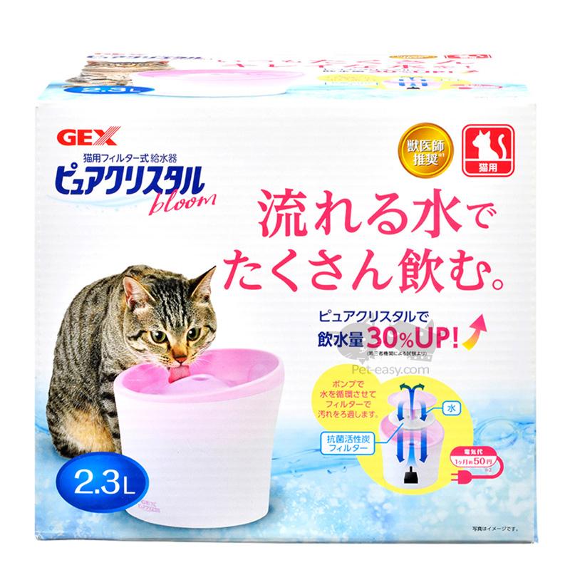 花見cat2.3A.jpg