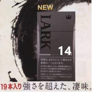 LARK14.JPG