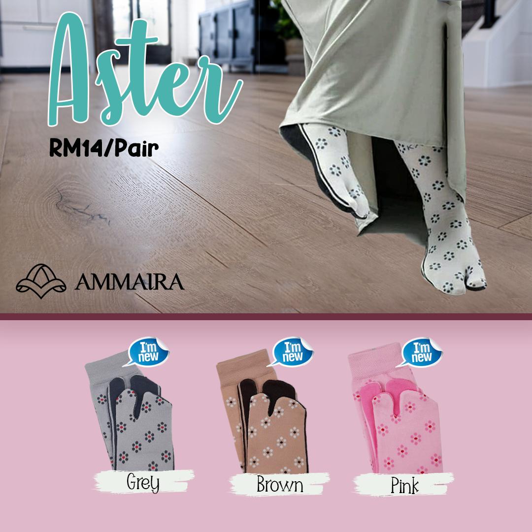 aster katalog HARGA.png