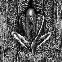 ILDJARN Forest poetry CD.jpg