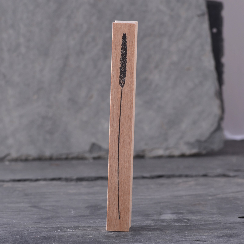 Stempel-Lieschengras.jpg