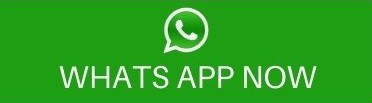 WHATS APP NOW.jpg