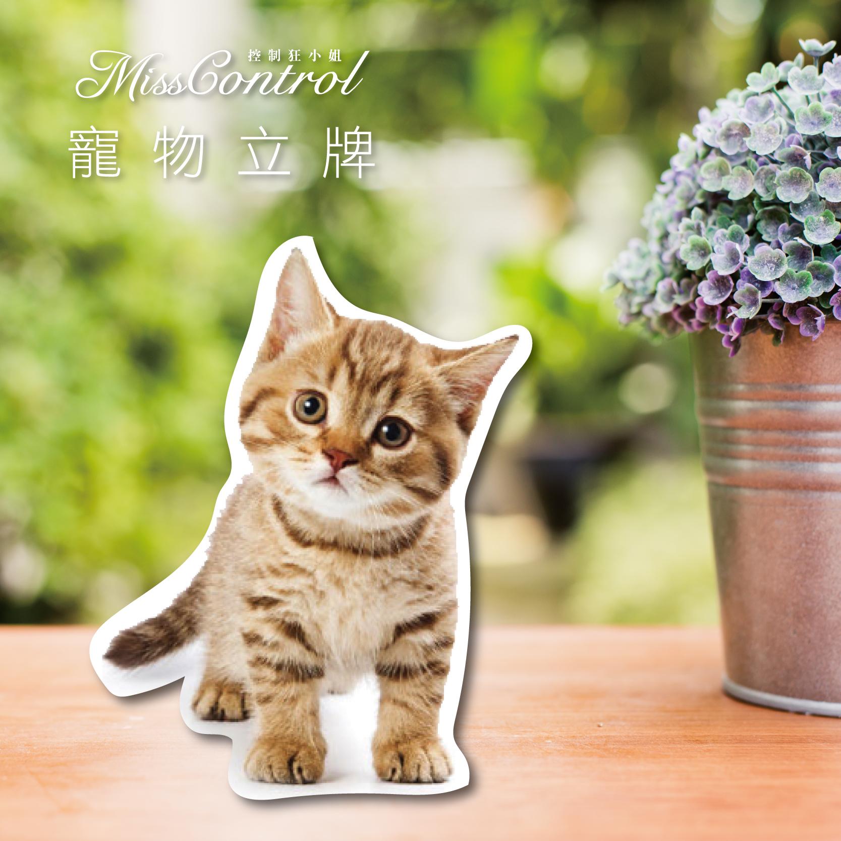 寵物立牌-01.jpg