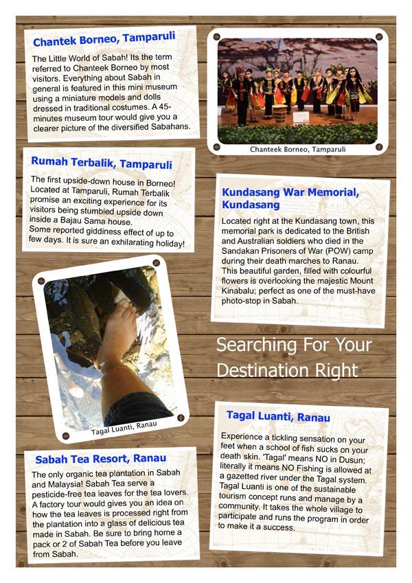 5in1 Newsletter_3.jpg