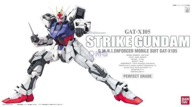 Bandai PG Stirke Fighter 1.0.jpg