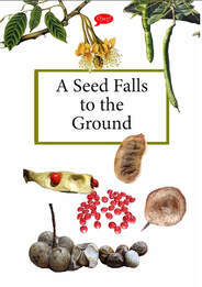 A Seed Falls to the Ground 1.jpg