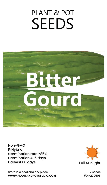 Bitter Gourd.jpg