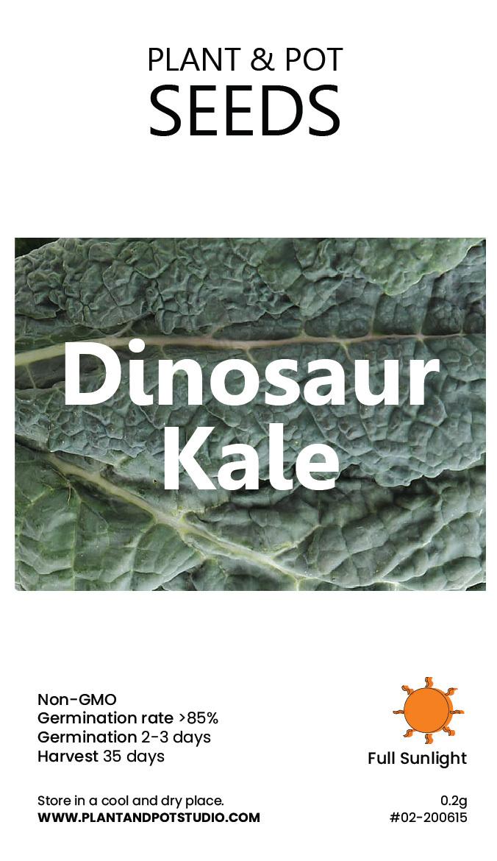 Dinosaur Kale.jpg