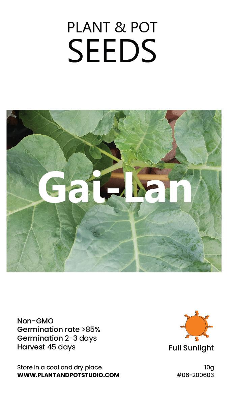 Gai-Lan.jpg