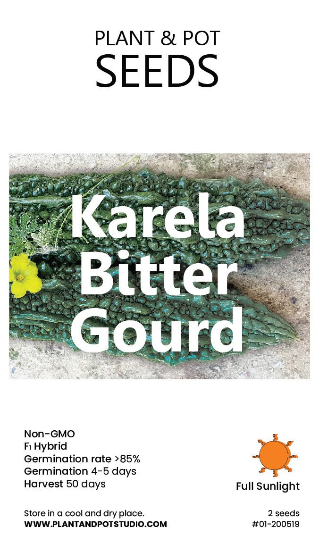 Karela Bitter Gourd.jpg