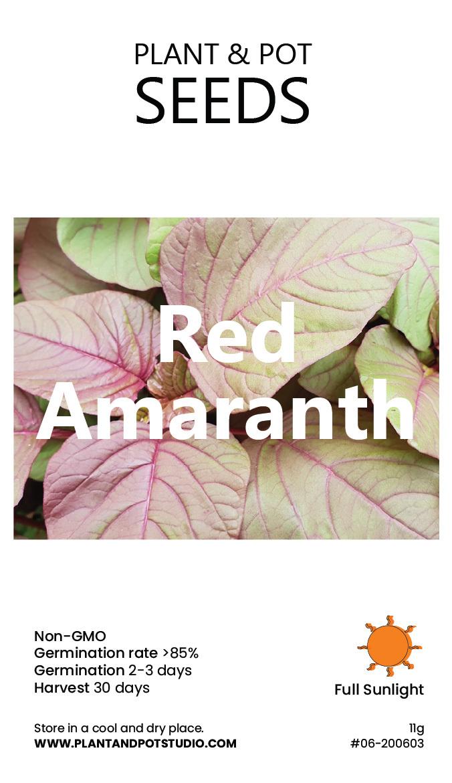 Red Amaranth.jpg