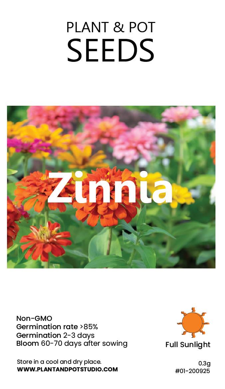 Zinnia-01.jpg