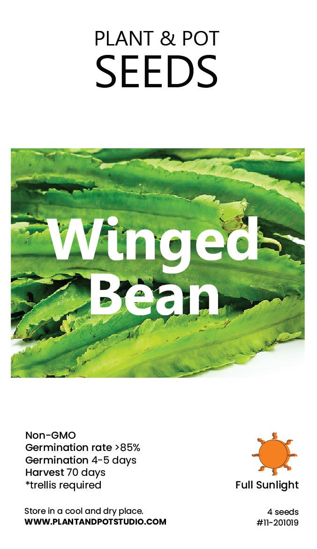 Winged Beans-01.jpg