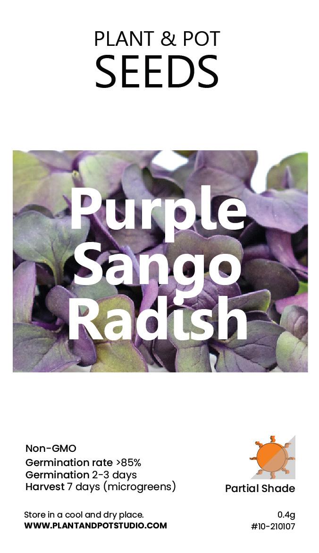 Purple Sango Radish-01.jpg