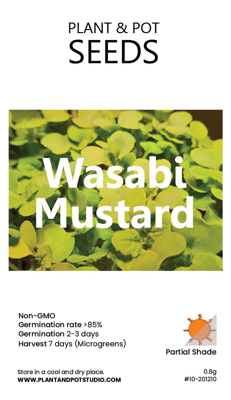 Wasabi Mustard-01.jpg