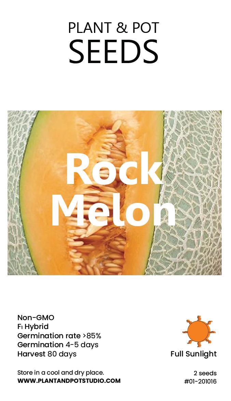 Rock Melon-01.jpg