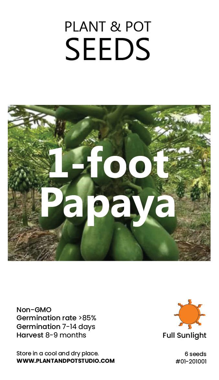 1-foot Papaya-01.jpg