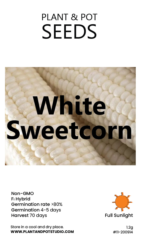 White Sweetcorn-01.jpg