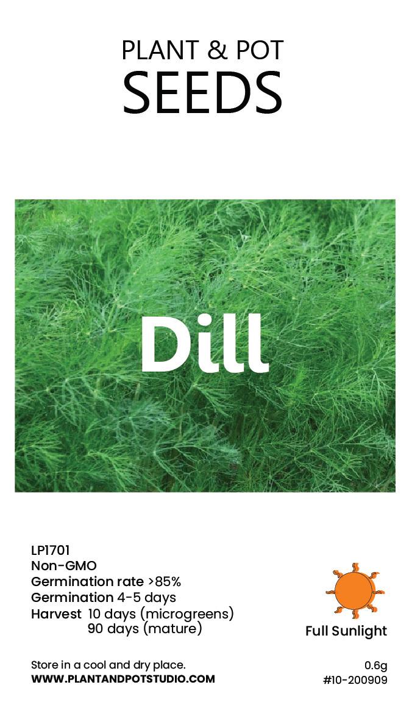 Dill-01.jpg