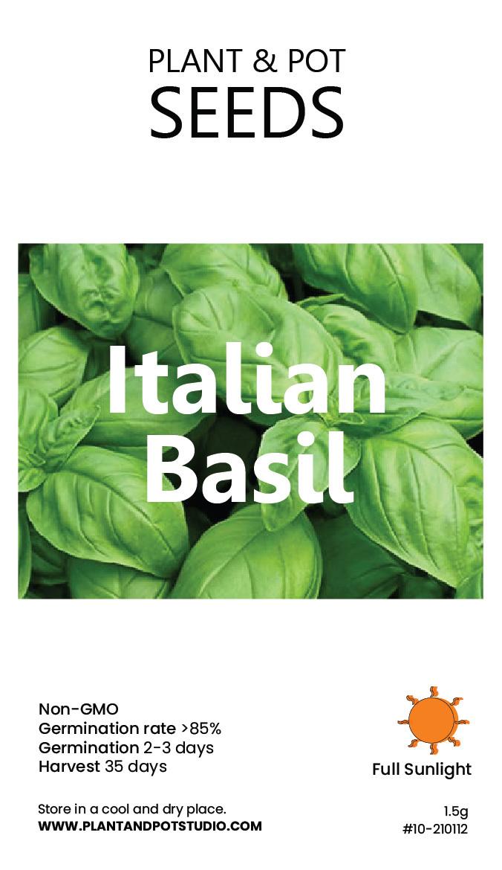 Italian Basil-01.jpg