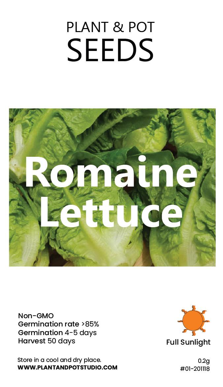 Romaine Lettuce-01.jpg