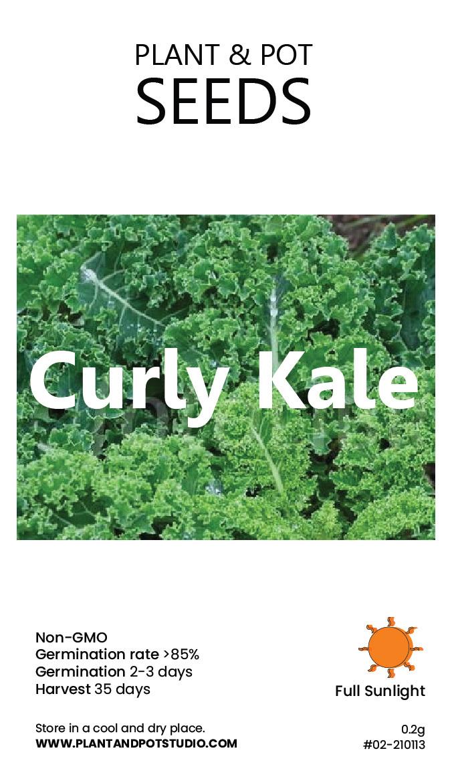 Curly Kale-01.jpg