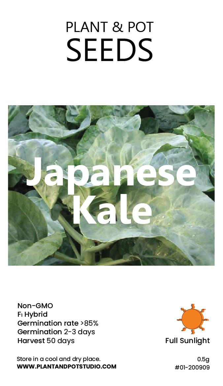 Japanee Kale-01.jpg
