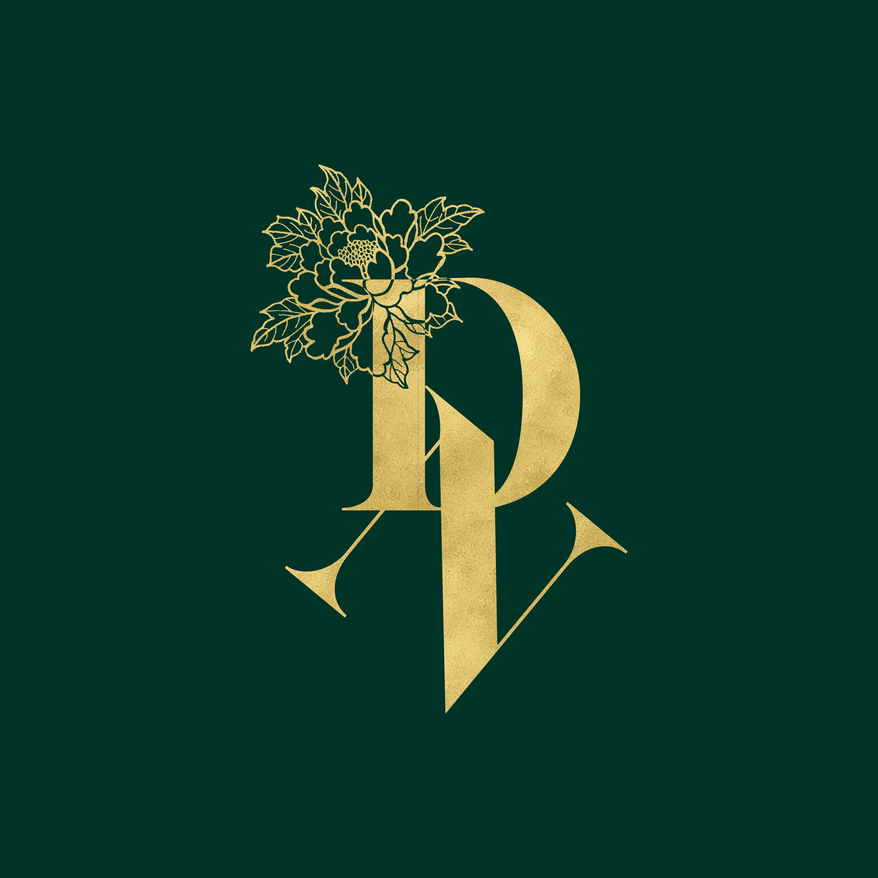 DN Rebrand-02.png