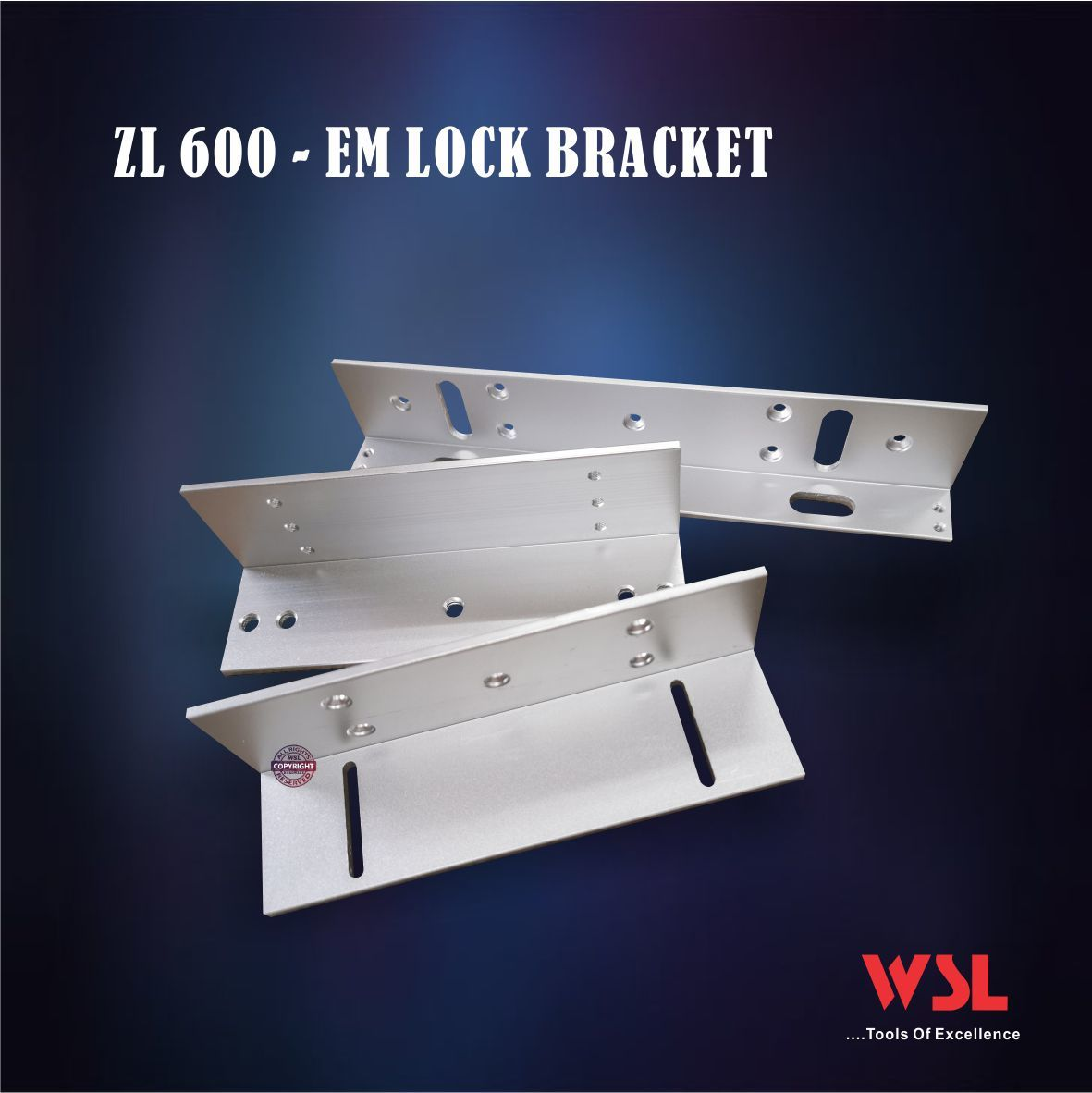 ZL600 EM LOCK.jpg