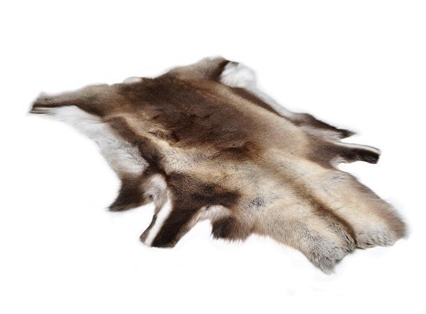 WEB_Image Reindeer Skin (Impregnated) 15009_a219734915.Jpeg