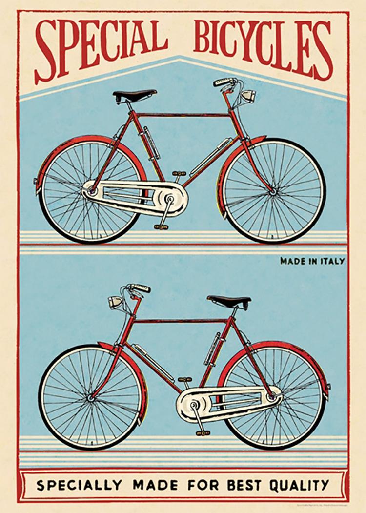 兩台腳踏車.jpg