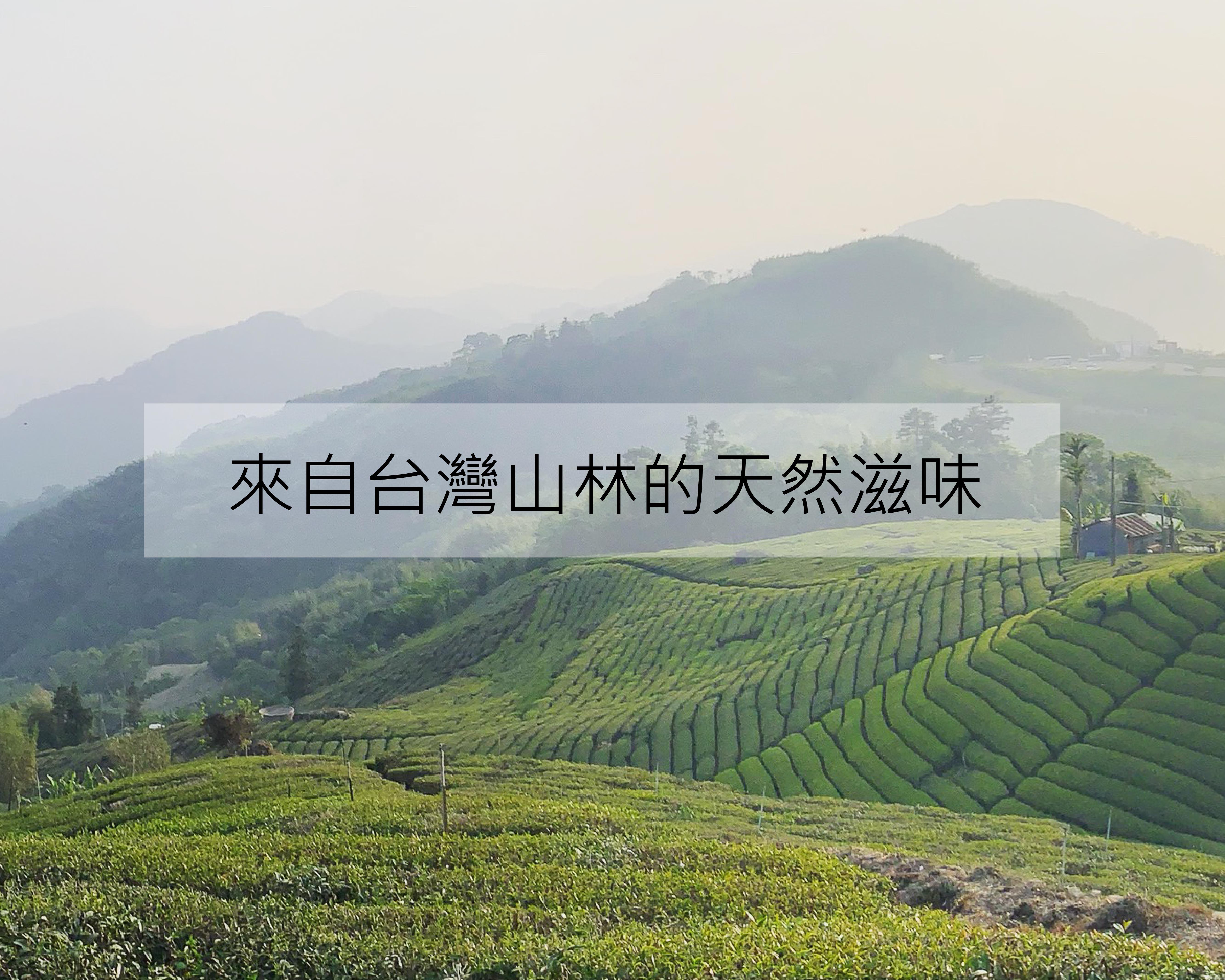 台灣山林的天然滋味.jpg